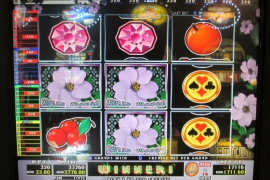 WILD ROSES THE GARDEN 4×8 37,760枚