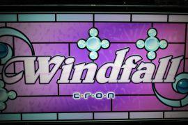 新しい仲間登場~ Wind fall