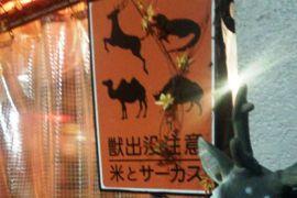 【閲覧注意?】虫を食べる・・。米とサーカスに行って来ました