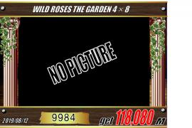 WILD ROSES THE GARDEN 4×8 118,080枚