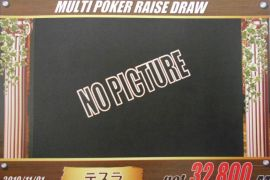 MULTI POKER RAISE DRAW 32,800枚