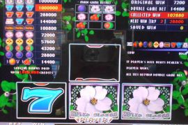 WILD ROSES THE MULTI GARDEN 1,028,800枚