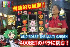 MAX400BETのバラに挑む!