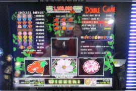 WILD ROSES THE MULTI GARDEN 115,200枚