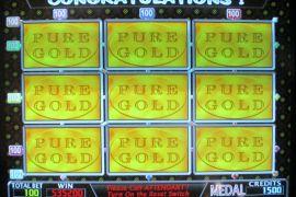 WINNER'S WHEEL PURE GOLD 535,200枚