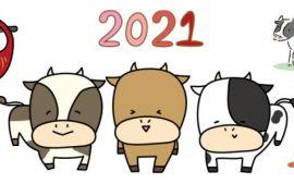 【2021】明けましておめでとうございます